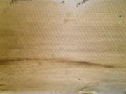 Samples/no-nail-sawn-floor-board5.jpg